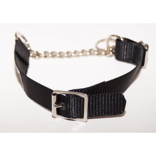 Webbing Collar With Buckle, Black