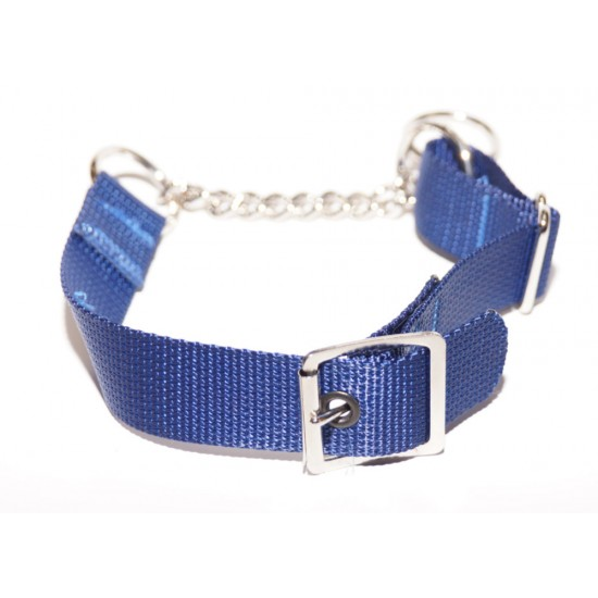 Webbing Collar With Buckle, Blue