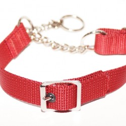 Webbing Collar With Buckle, Red