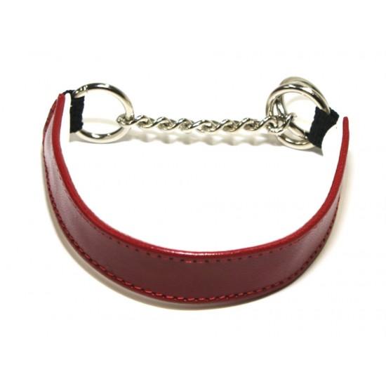 Tiny Tot Red Collar